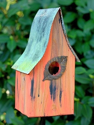 Shady Shed Birdhouse Mango