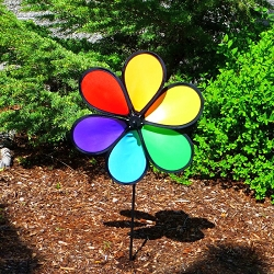 Rainbow Dazy Small 6 Petal Spinner Set of 6