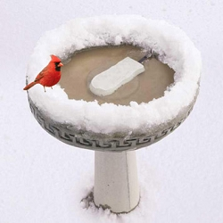 Bird Bath Standard Ice Eliminator 50 Watt