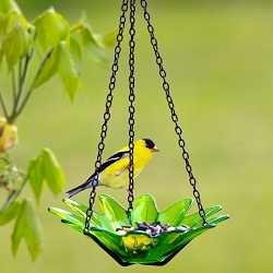 Daisy Hanging Glass Bird Feeder Lime 8