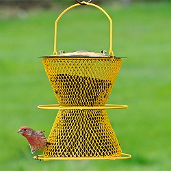 NO/NO Designer Double with Perch Ring Bird Feeder