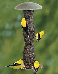 NO/NO Green and Black Finch Bird Feeder