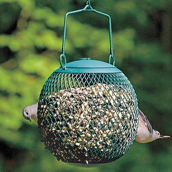 NO/NO Seed Ball Feeder Green Set of 2