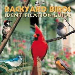 Backyard Birds Identification Guide CD