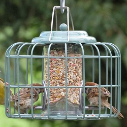 Nuttery Mini Round Caged Seed Feeder