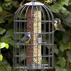 Nuttery Classic Extra Large Caged 2-in-1 Combo Feeder