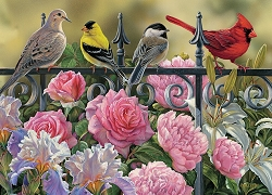 Birds on a Fence 1000 Piece Jigsaw Puzzle