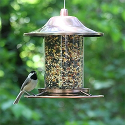 Small Panorama Copper Bird Feeder