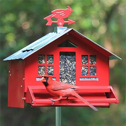 Squirrel-Be-Gone II Country Bird Feeder