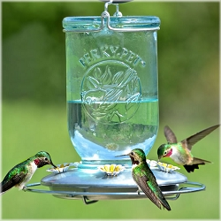Mason Jar Antique Blue Glass Hummingbird Feeder 32 oz.