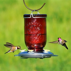 Mason Jar Antique Red Glass Hummingbird Feeder 32 oz.