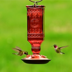 Red Square Antique Bottle Glass Hummingbird Feeder