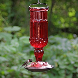 Elegant Antique Glass Bottle Hummingbird Feeder Ruby Red 24oz