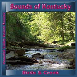 Sounds of Kentucky Birds & Creek CD