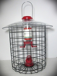 Droll Yankees Bird Lovers Red Seed Feeder 15