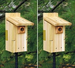 Songbird Cedar Ultimate Bluebird House Package w/Pole Kit