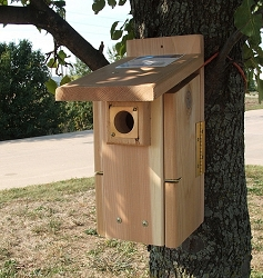 Songbird Cedar Ultimate Bluebird House