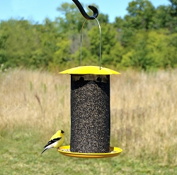 Mammoth Yellow Nyjer Feeder