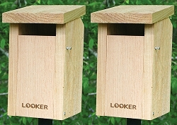 Sparrow Resistant Slot Bluebird House Package w/Pole Kit