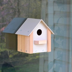 Window Bird House w/Mirrored Window Film