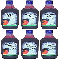Birdberry Jelly 20 oz 6/Pack
