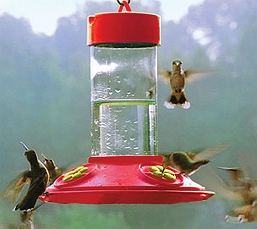 Dr. JB's Clean 16oz Hummingbird Feeder All Red with Yellow Petals