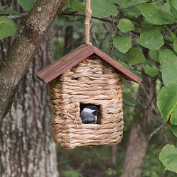 Hanging Grass Roosting Pocket with Roof Set of 12
