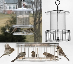 All Weather Clear Bird Feeder 6 Quart with Squirrel Cage