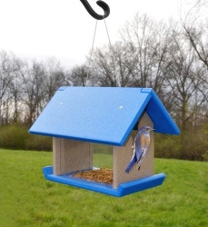 Recycled Plastic Mealworm Feeder Blue