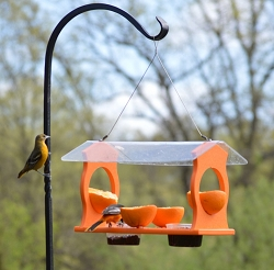 Rubicon Recycled Plastic Oriole Diner Feeder