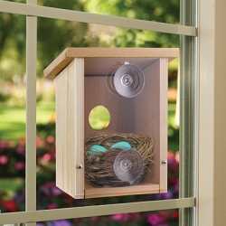 Nest View Cedar Bird House with Mirrored Window Film
