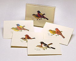 Peterson Birds II Boxed Notecard Assortment Set of 8