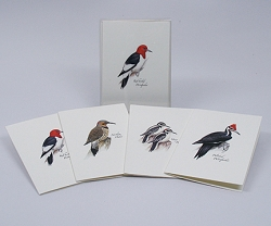 Peterson Woodpecker Boxed Notecard Assortment Set of 8