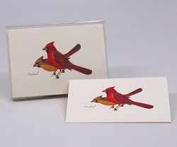Cardinal Boxed Notecard Assortment Set of 8