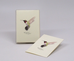 Ruby-throated Hummingbird Boxed Notecard Assortment Set of 8