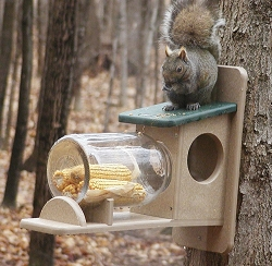 Second Nature Recycled Plastic Squirrel Jar Feeder