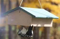 Birds Choice Recycled Plastic Double Upside Down Suet Feeder