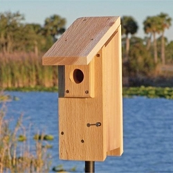 Select Cedar Eastern Bluebird House