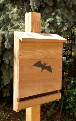 Select Cedar Single Chamber Bat House