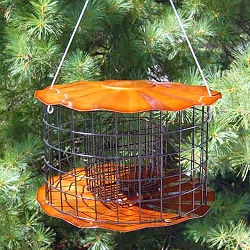 Barrier Guard Caged Double Suet Cake Feeder