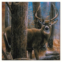 Woodland Sentry Buck Eco Magnet