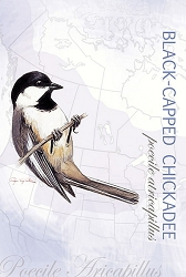 Black-Capped Chickadee EcoNotes Set of 12