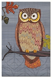 Awesome Owls EcoNotes Set of 12