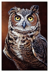 Great Horned Owl EcoNotes Set of 12