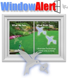 Window Alert Bird Collision Decal Hummingbird 8/Pack