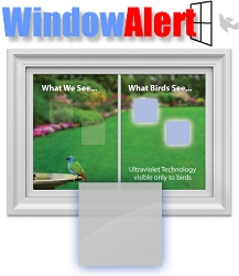 Window Alert Bird Collision Decal Classic Square 8/Pack