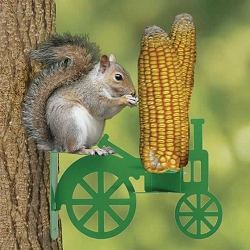 Audubon Squirrel Tractor Feeder Green