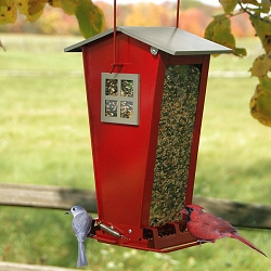 Audubon Snack Shack Squirrel Proof Bird Feeder
