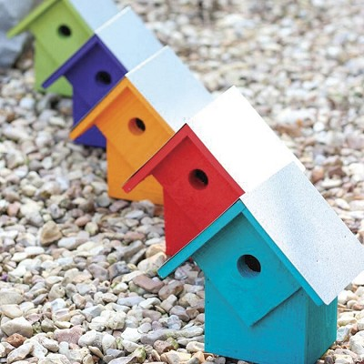 Summer Home Bird House Pack of 5 Neon Lites