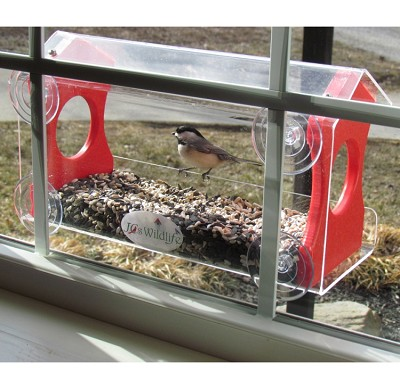 Recycled Poly Window Bird Feeder Large Red